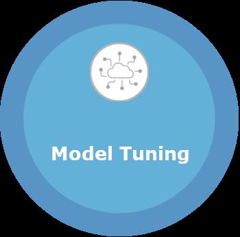 model_tuning